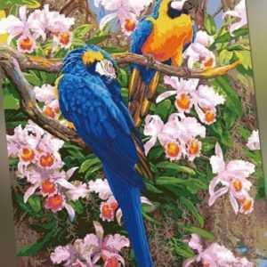 Malen nach Zahlen - Acryl Öl Malerei Papageie Vögel Blumen 50x40cm