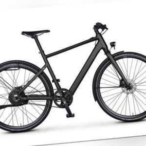 Rabeneick TX-E E-Bike 252Wh Bafang Singlespeed Riemenantrieb Disc Modell 2020