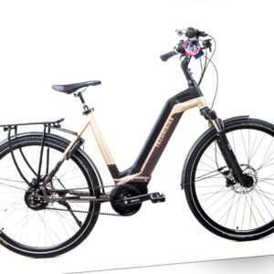 28 Zoll E-Bike TechniBike Elektro Fahrrad Pedelec Riemen Schwarz Gold Gr. M