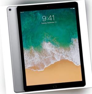 Apple iPad 2017 5 Generation 9,7 Zoll A1822 Tablet Wi-Fi Wlan 32GB Spacegrau
