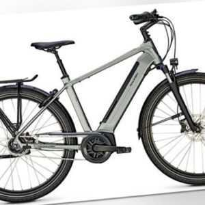 Raleigh, Bristol XXL, Herren, 28Z, 5G, Bosch 625Wh, E-Bike grau matt 170kg RH 53