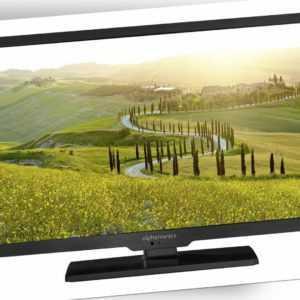 Reflexion LDDW20N mit DVB-S2/C/T2 HD & DVD-Player für 12/24/230V WoMo Caravan