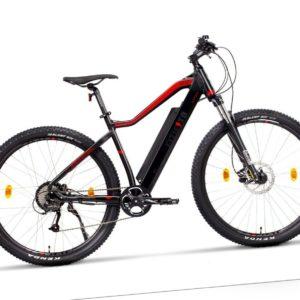 Fitifito MT29 Elektrofahrrad Mountainbike E-Bike ebike E-MTB 48V 250W Heckmotor