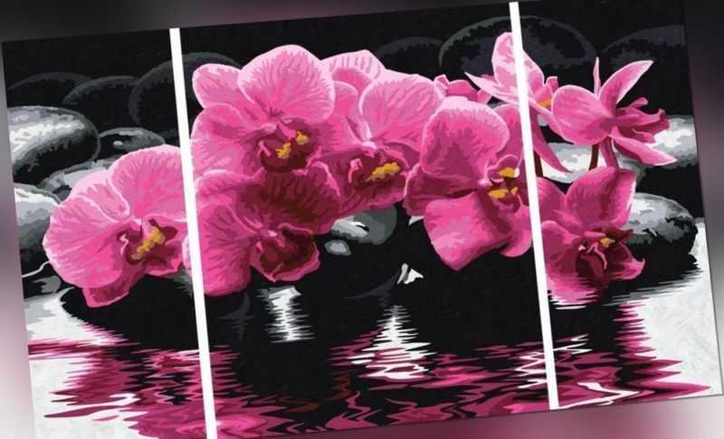 LEINWANDBILD DELICATE ORCHIDS TRIPTYCHON Orchidee Blume Pflanze Blüten 609260603