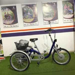 Van Raam Midi Therapeutisches Elektro Dreirad mit Neuen Akkus