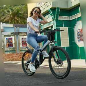 26 Zoll Elektrofahrrad Falten E-Bike Mountainbike Klapprad M. 250W Motor Unisex